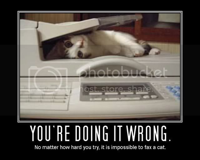 Cant fax a cat Pictures, Images and Photos
