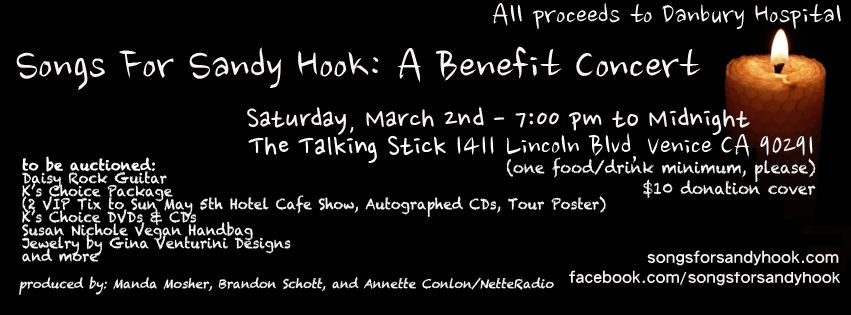 SONGS FOR SANDY HOOK: A BENEFIT CONCERT ~ MARCH 2nd! photo SH-webbanner_zps06c1cb21.jpg